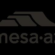 B&W logo for Mesa Arizona